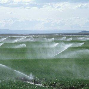 Agricuture Inefficiency Alarming
