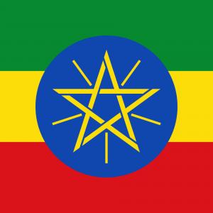 Ethiopia Ripe For Investment