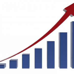 Economy Grows 4.6% in Q1