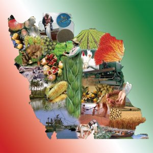 Agro Share in Next Budget $1.1b