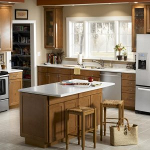 Home Appliances Industry Prospering
