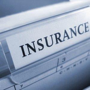 7m Insurance ID Cards