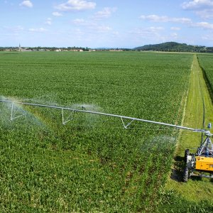 Irrigation Reform  to Help Revive Farming