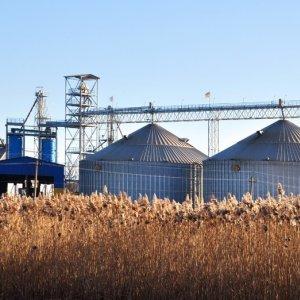 Kazakh Grain Terminal Construction Postponed