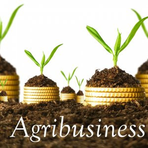 Support for Private  Transnational Agribusiness