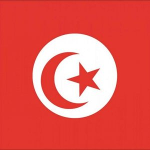 Closer Ties With Tunisia
