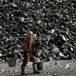 China Bans Coal Import