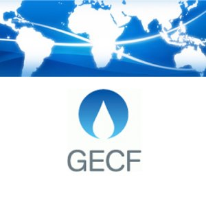 GECF Members  Meeting in Nov.