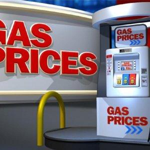 Gasoline Report Denied