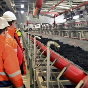 Germany Warns Against Rushed Exit From Coal Power