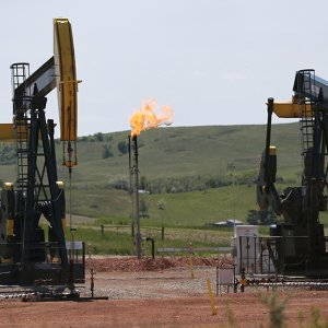 Slight Decline in Global Oil Output Due to Cheap Prices