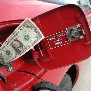 OECD Urges Deeper Cuts of Fuel Subsidies