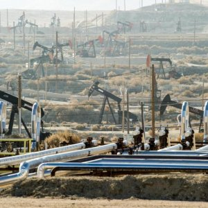 OPEC Unlikely to Lose  Oil Influence to US Shale