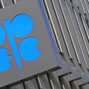 Oil Falls as S. Arabia Rejects OPEC Summit