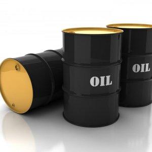 $25 Oil