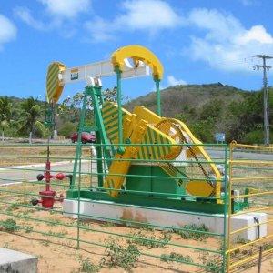 Petrobras CEO: 5 Years to Rebuild Company