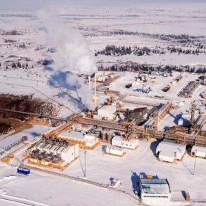 Russian Oilfield  for Sale