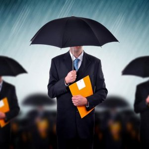 Competitive Insurance Industry Nurtures Success