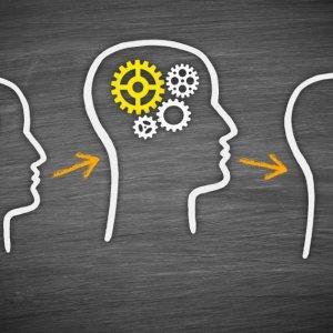 Startups Sharing Ideas