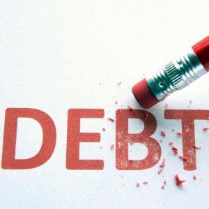 Part of Gov't Debt Paid  in Cash