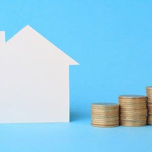 Gov't Policy Not Housing-Savvy