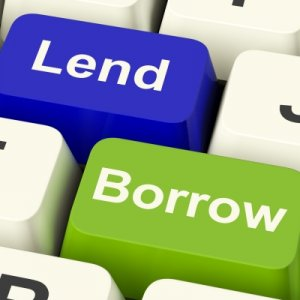 Services Sector Top Borrower