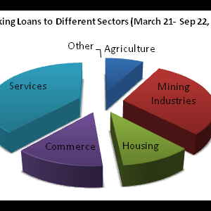 Services Sector Gets Biggest Chunk of Loans