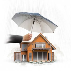 Property Insurance Gaining Traction