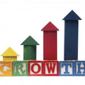 CBI Defends 4.6% Growth