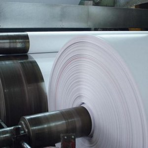 Setting Up Pulp, Paper Production Plant
