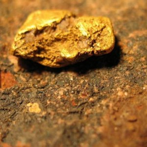 Gold Sector Will Regain Lustre
