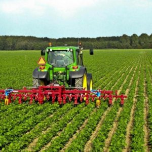 Plan to Use Foreign Land for Farming