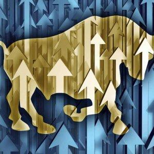 Return of Bull Market
