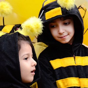 'Honey Festival' in Tehran