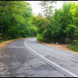 Golestan Park Road Consent Withdrawn
