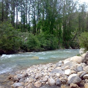 Online Monitoring  of Rivers