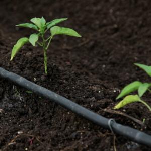 Improving Irrigation Water Efficiency