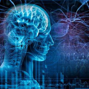 Ergogenic  Aids Cause Epilepsy