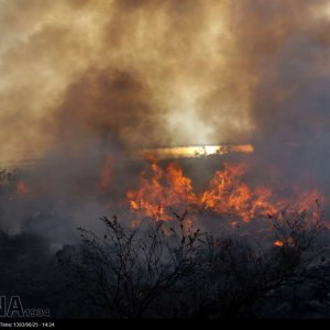 Ashuradeh  Fire Losses