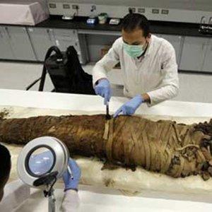 Mummies in Sewage