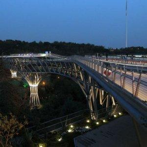 Scenic Pedestrian Bridge