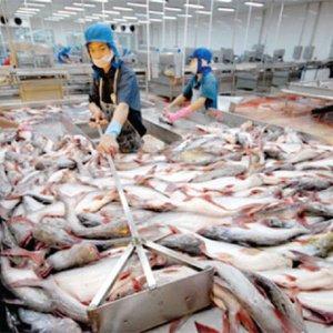 Vietnam, CU to Sign FTA