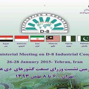 D-8 Summit Opens in Tehran