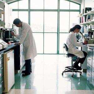 Europe Keen  to Boost Scientific Ties