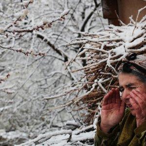 Armenia Farmers Seek Way Out of Debt Trap
