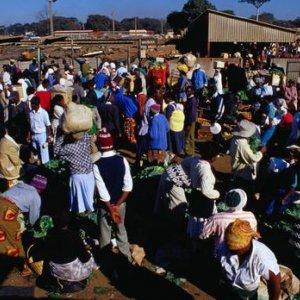 Deflation in Zimbabwe