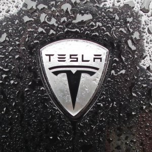 Tesla Vehicle Sales Rise