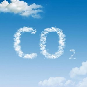 Carbon Tax to Tackle Air Pollution?