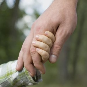 Adoptions on the Rise