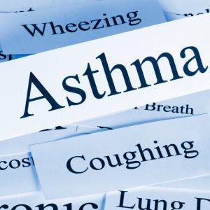 Asthma, Allergy Biennial Meet